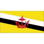 Bandera de Brunei